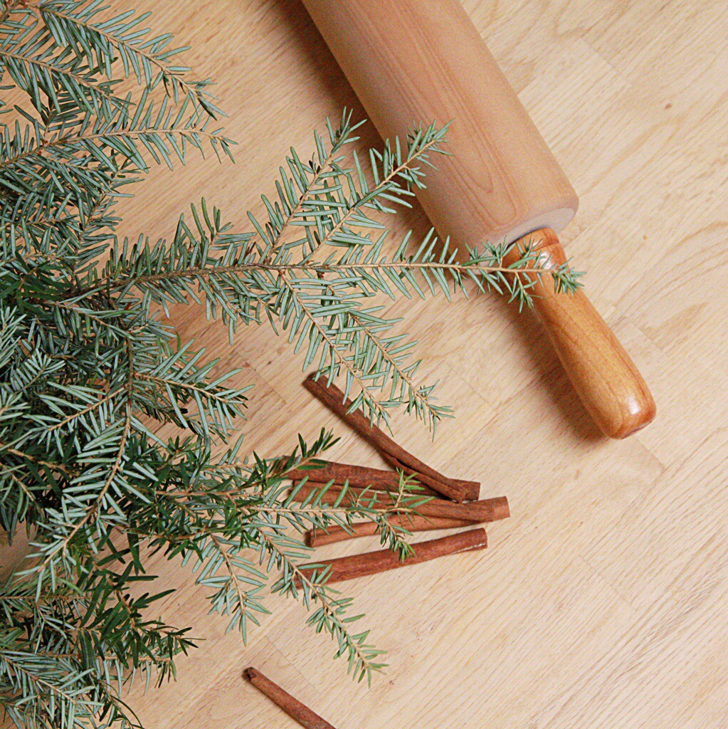 Evergreen plant with cinnamon sticks and a rolling pin beside it.