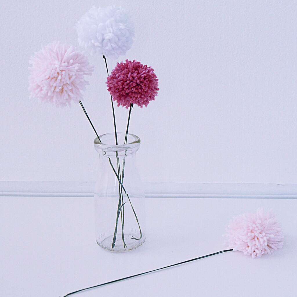 Three Pom Pom flowers in a glass vase with one lying on the counter.