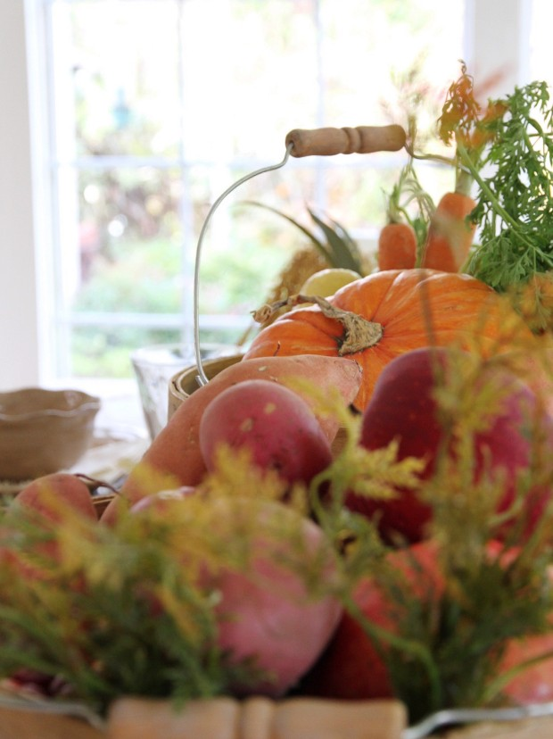 Pumpkins and gourds and apples on table.