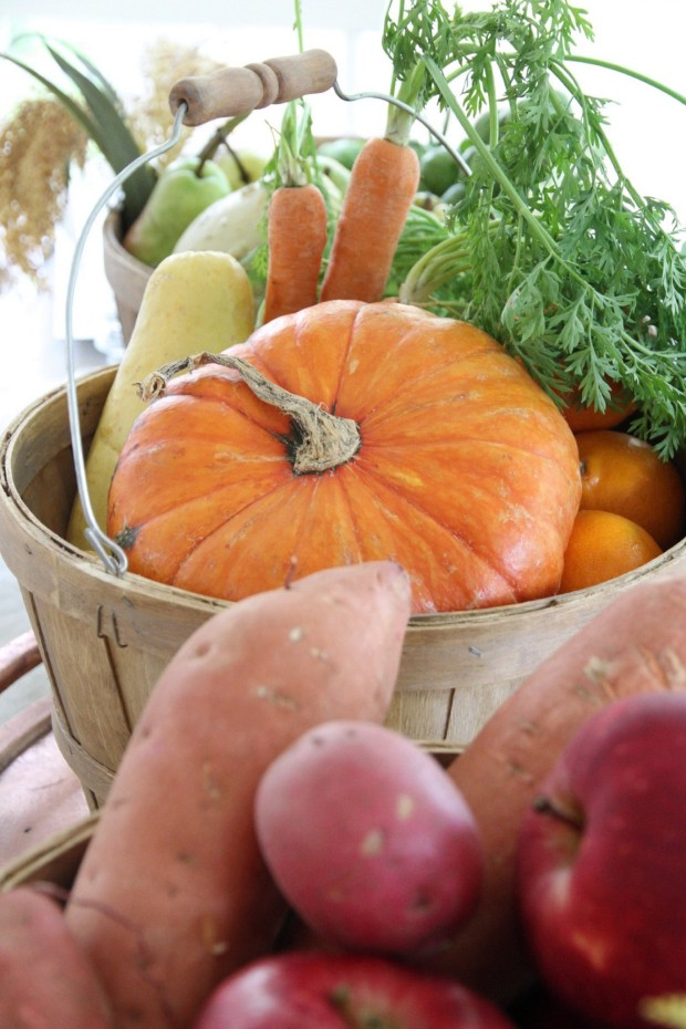 Up close picture of a pumpkin, carrots, yams and apples on the table.