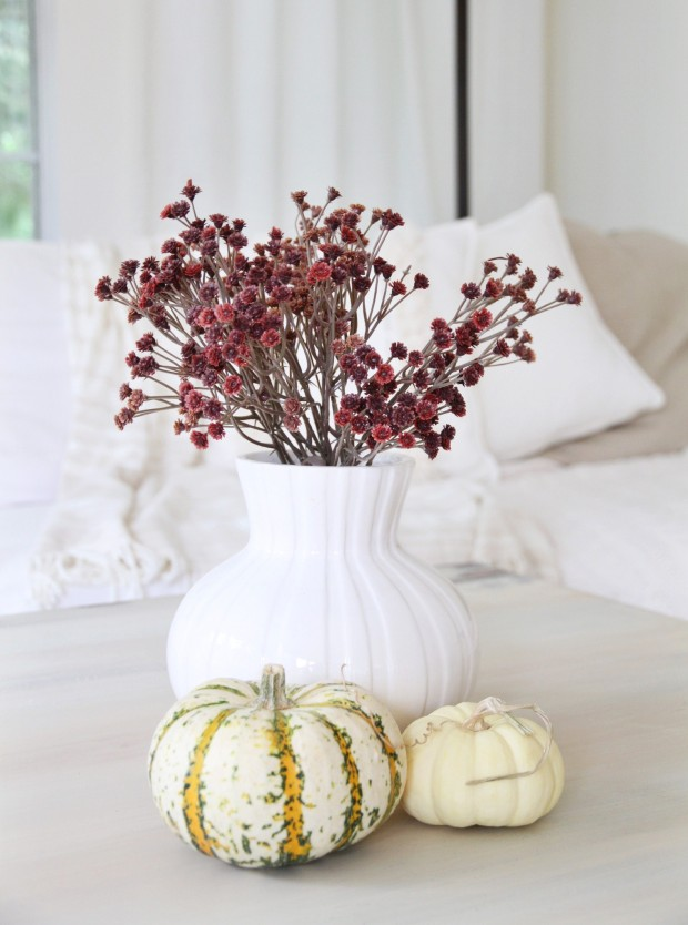 White vase with small red flowers and two white pumpkins on coffee table.