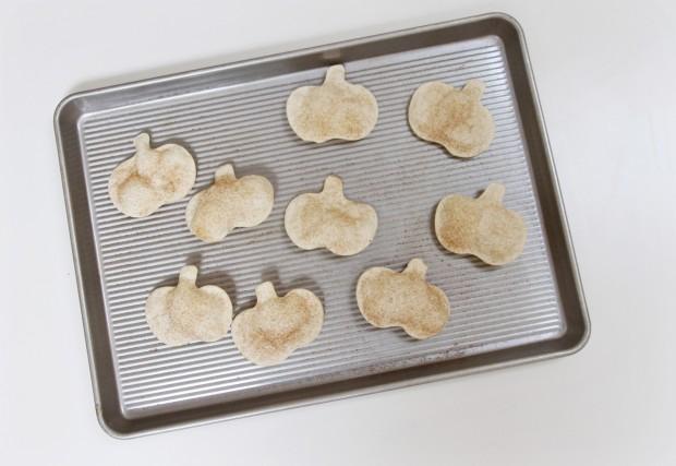 Cinnamin Pumpkin Chips