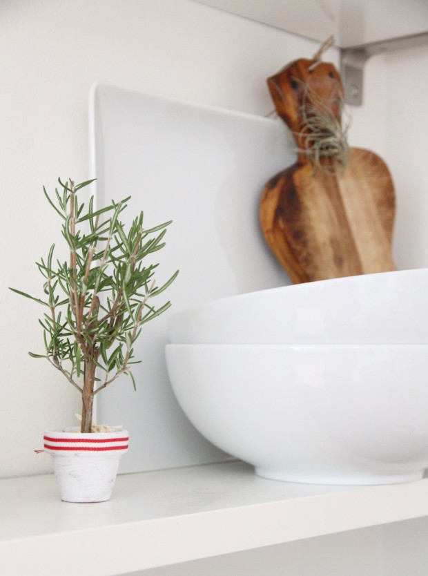 White bowls and little potted Christmas tree in kitchen.