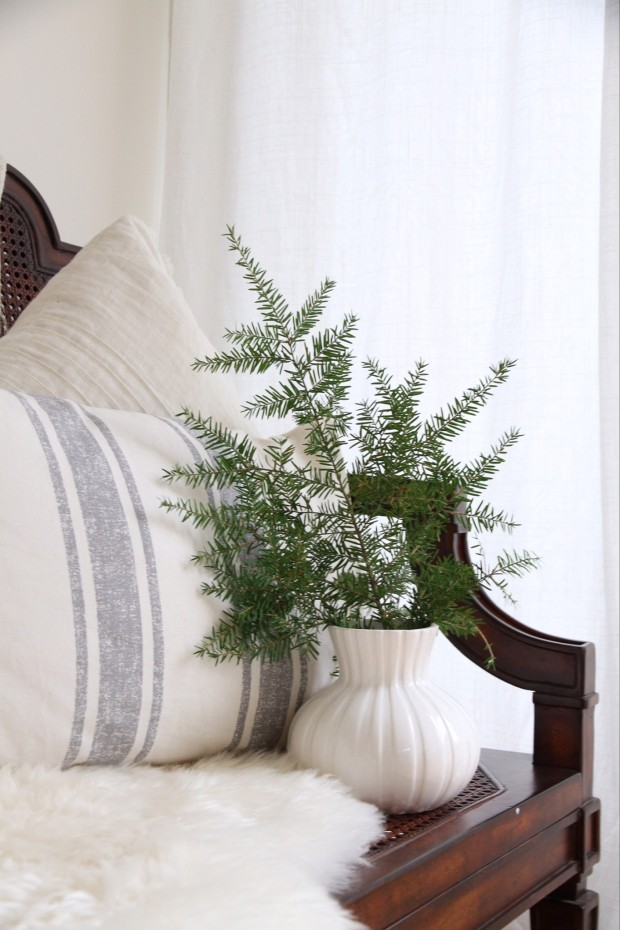 Small white textured vase with an evergreen plant inside it.