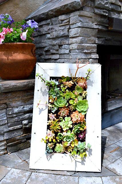 how-to-make-a-succulent-planter