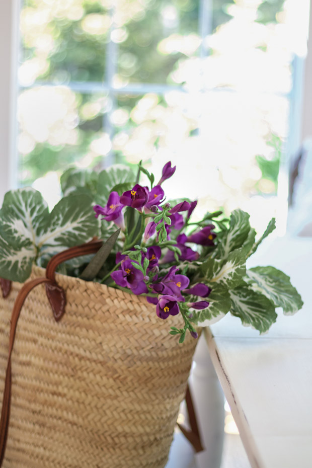 Purple and green foliage in tote bag.