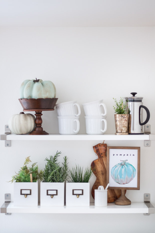 White shelf ledge with the royal pumpkin framed on it plus coffee cups and plants.