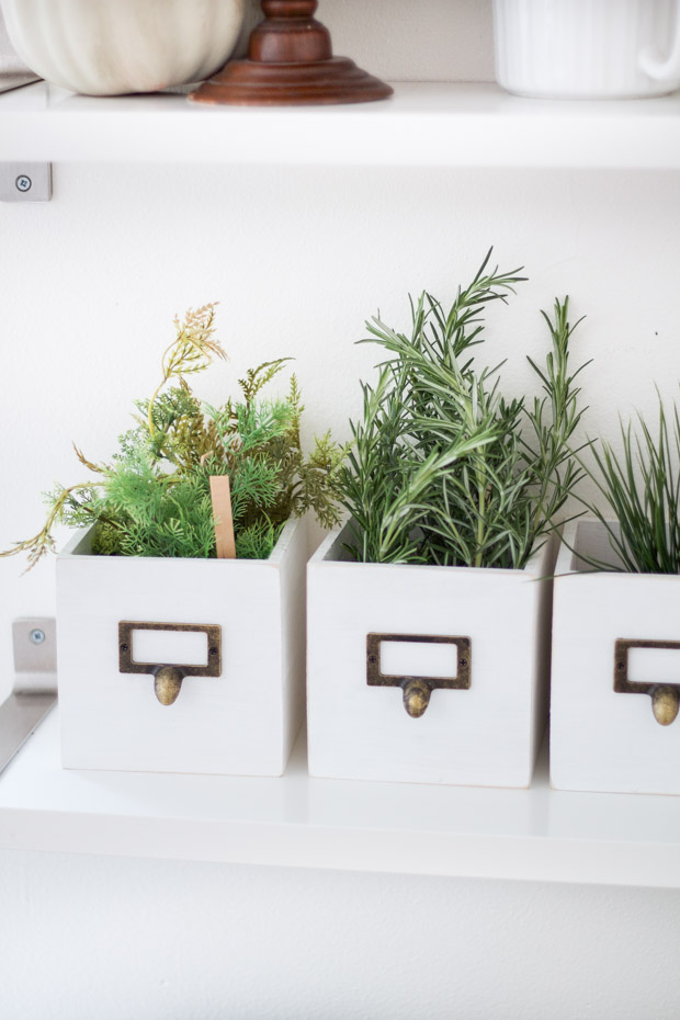 Little green plants in white containers on the shelf.