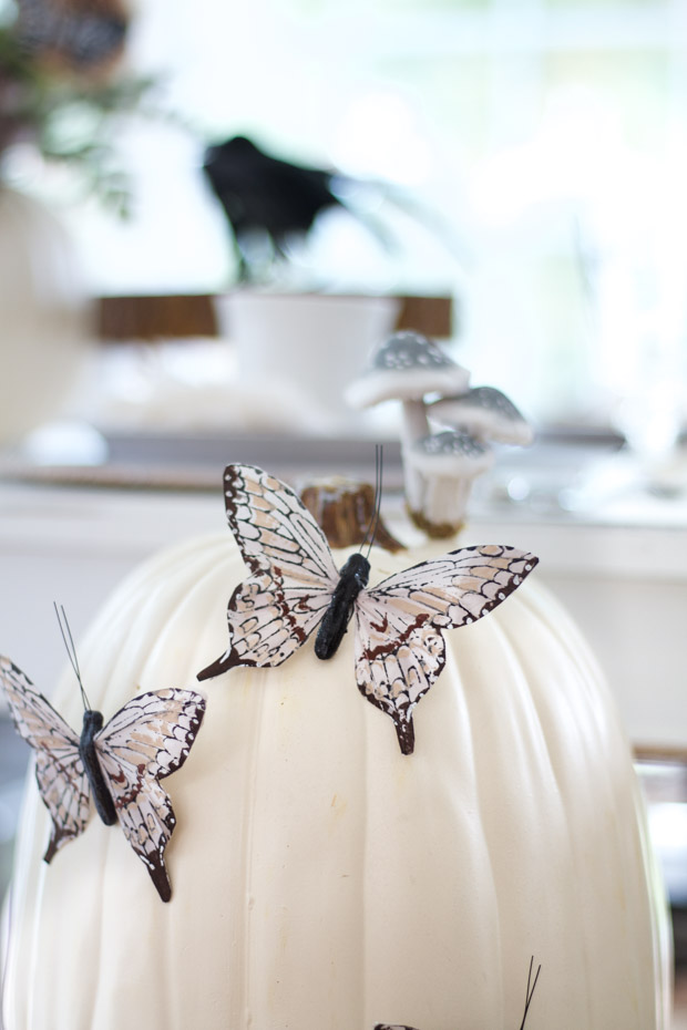 White pumpkin with two multi coloured butterflies on it.