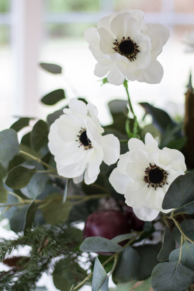 Up close picture of the white flowers and black centers.