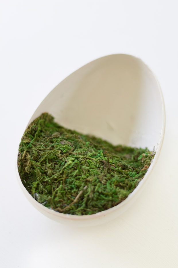 The moss in the plastic egg.