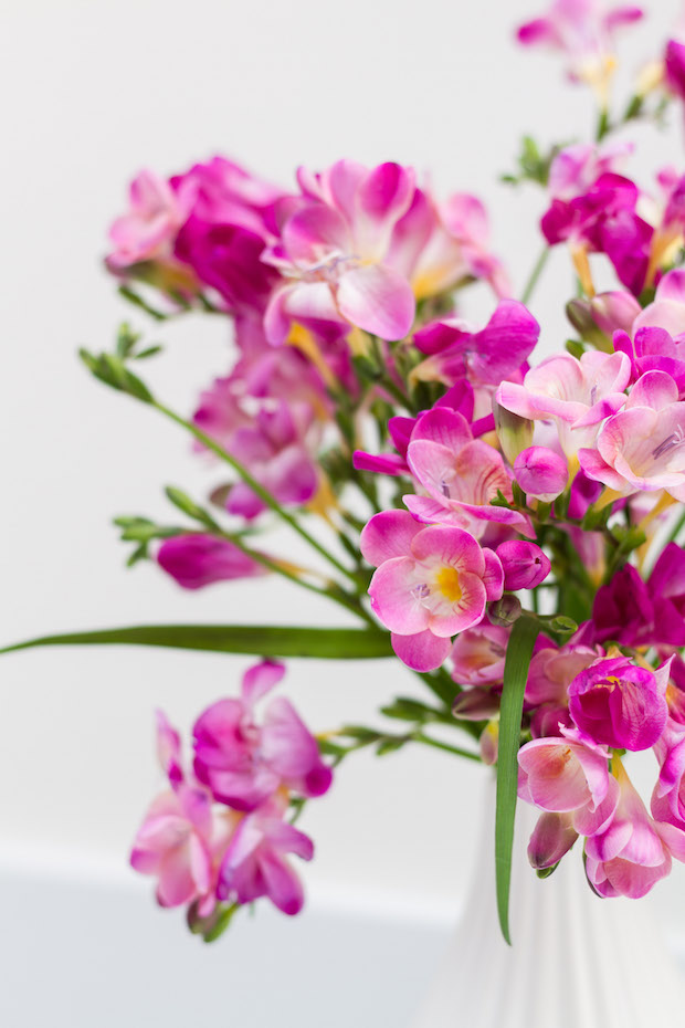 Vibrant pink flowers in a white vase.
