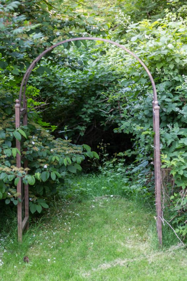 Secret path into bushes.