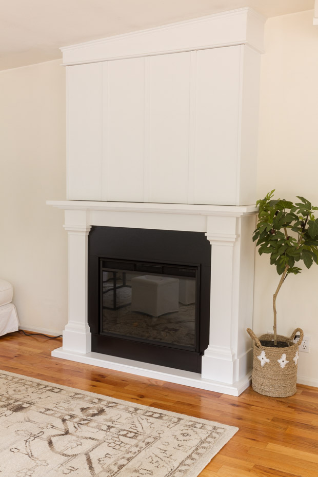 Plant in corner with black fireplace and white mantel.