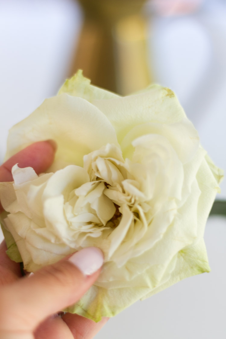 how to make store bought roses look like garden grown roses-2