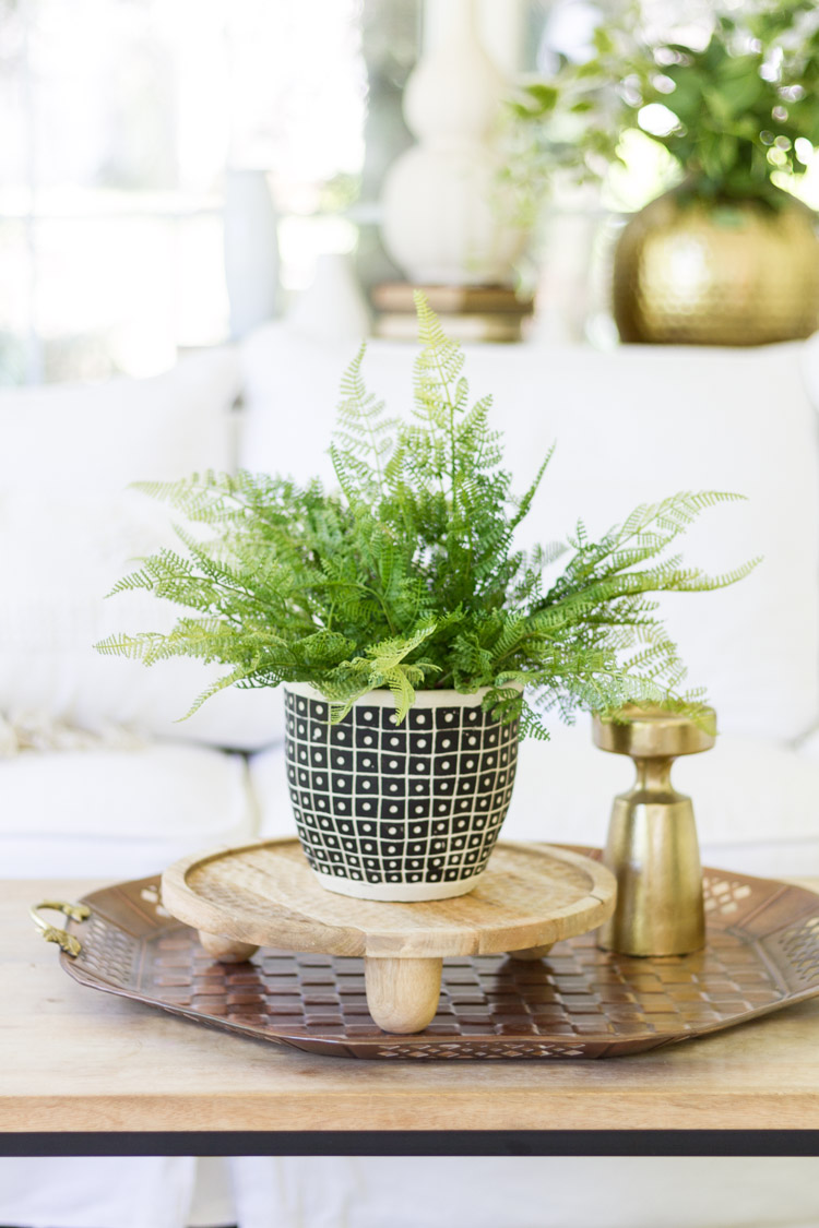 Fern in pot on side table.