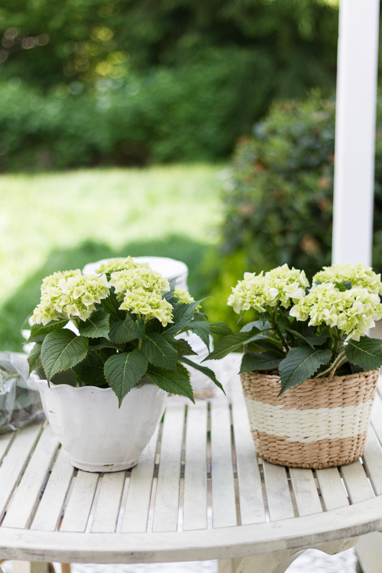 Outdoor Decorating and Entertaining