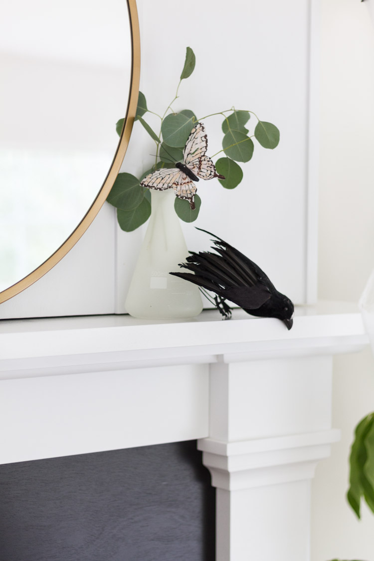 A butterfly and black crow on the white mantel.