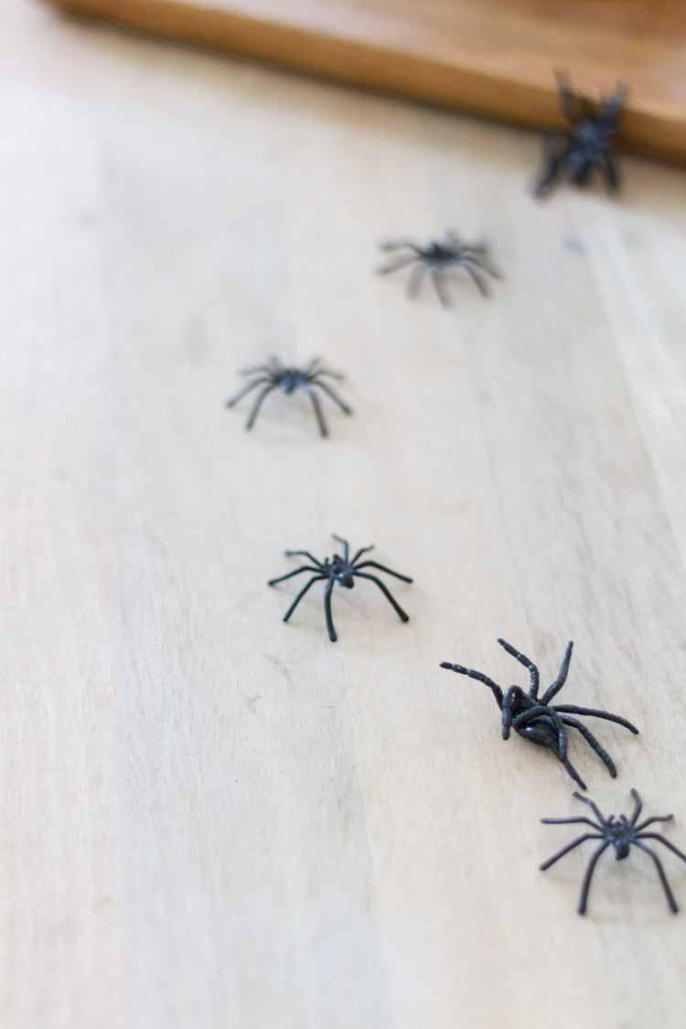 Little black spiders on the floor.
