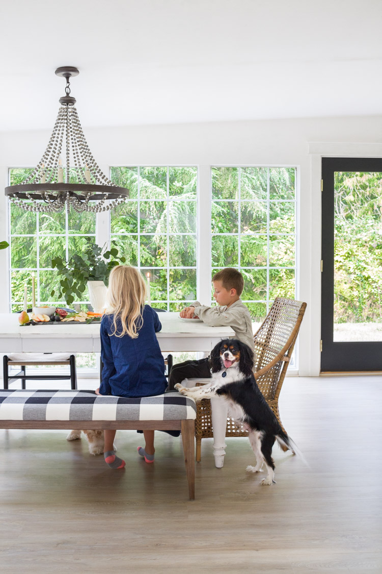 Children at the dining table eating with little dog beside them.