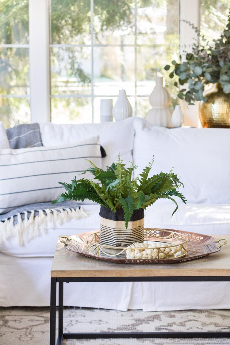 DIY Fern Plant