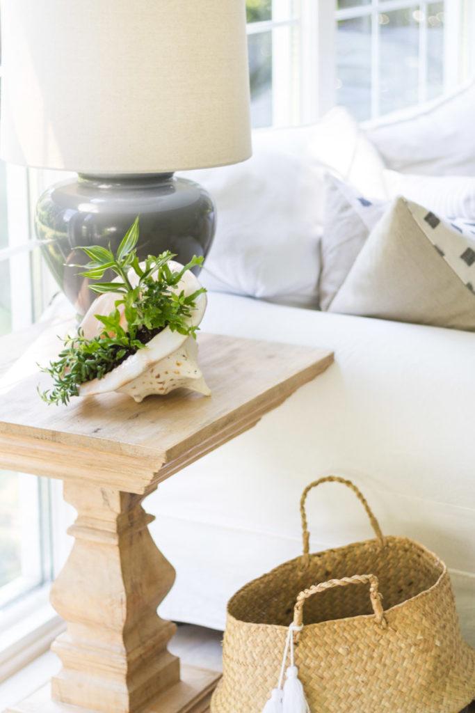 DIY Shell Planter