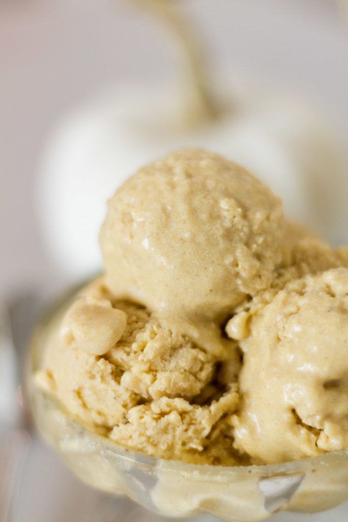 Dairy-Free Pumpkin Ice-Cream