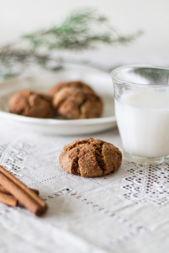 Gluten/Dairy Free Snickerdoodle Cookie Recipe